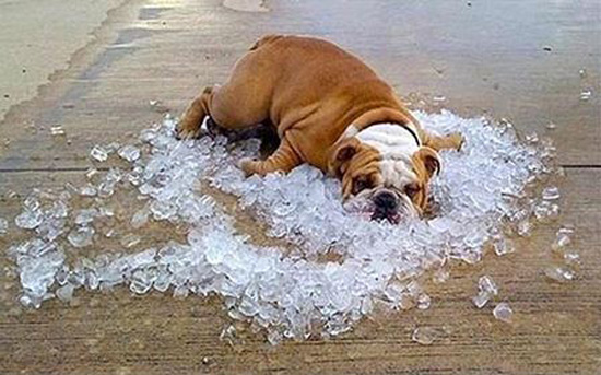 Keeping Cool – Extra Tips for Maximizing Your HVAC